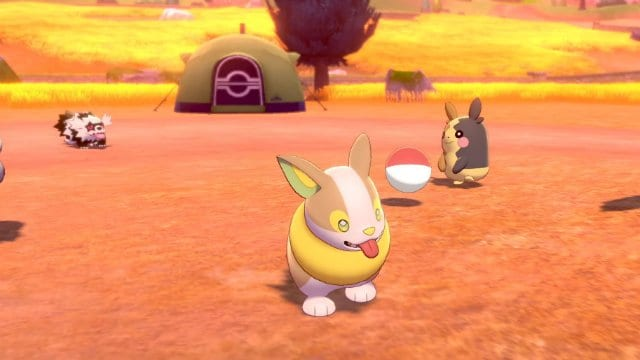 Pokemon Camp, Razones para jugar Pokemon Sword and Shield