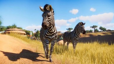 Photo of Planet Zoo: cómo aumentar la educación