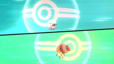 Photo of El sitio web de Wooloo Farm hecho por fanáticos es un reemplazo de GTS para Pokemon Espada y Escudo
