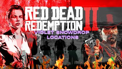 Photo of Red Dead Online: dónde encontrar Snowdrops violetas – 10 ubicaciones