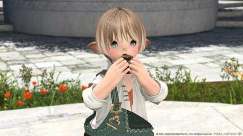 Final Fantasy XIV (14)