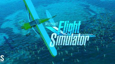Photo of Microsoft Flight Simulator: qué esperar, fecha de lanzamiento, jugabilidad, gráficos y más
