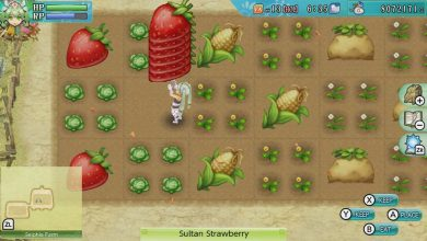 Photo of Rune Factory 4: Cómo hacer panqueques
