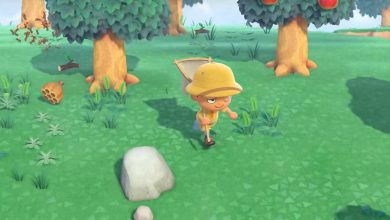 Photo of Animal Crossing New Horizons: Cómo atrapar insectos e insectos; Lista de todos los errores.