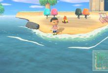 Photo of Animal Crossing New Horizons: Cómo atrapar peces cirujanos