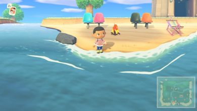 Photo of Animal Crossing New Horizons: Cómo atrapar peces cirujanos