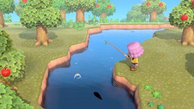 Photo of Animal Crossing New Horizons: dónde encontrar un muelle y qué puede atrapar allí