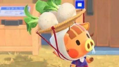 Photo of Esta calculadora de precios de nabos de Animal Crossing puede ayudarlo a ganar millones