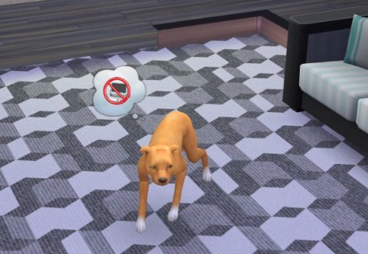 mods de mascotas