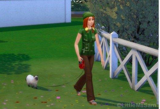 sims 4, pasear a los gatos