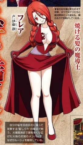 Fairy Tail (14)