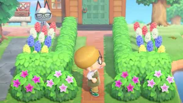 Animal Crossing New Horizons Leif Arbustos
