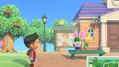Photo of Animal Crossing New Horizons: ¿Puedes atrapar pájaros? Respondido