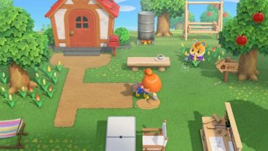 Photo of Animal Crossing New Horizons: Cómo atrapar moscas