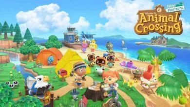 Photo of Animal Crossing New Horizons: Cómo atrapar una rana