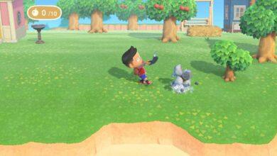 Photo of Animal Crossing New Horizons: Cómo mover rocas