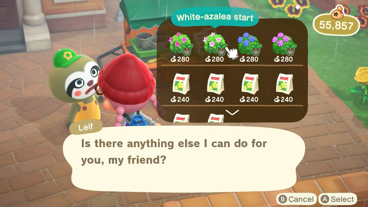 Pensamientos en Animal Crossing New Horizons