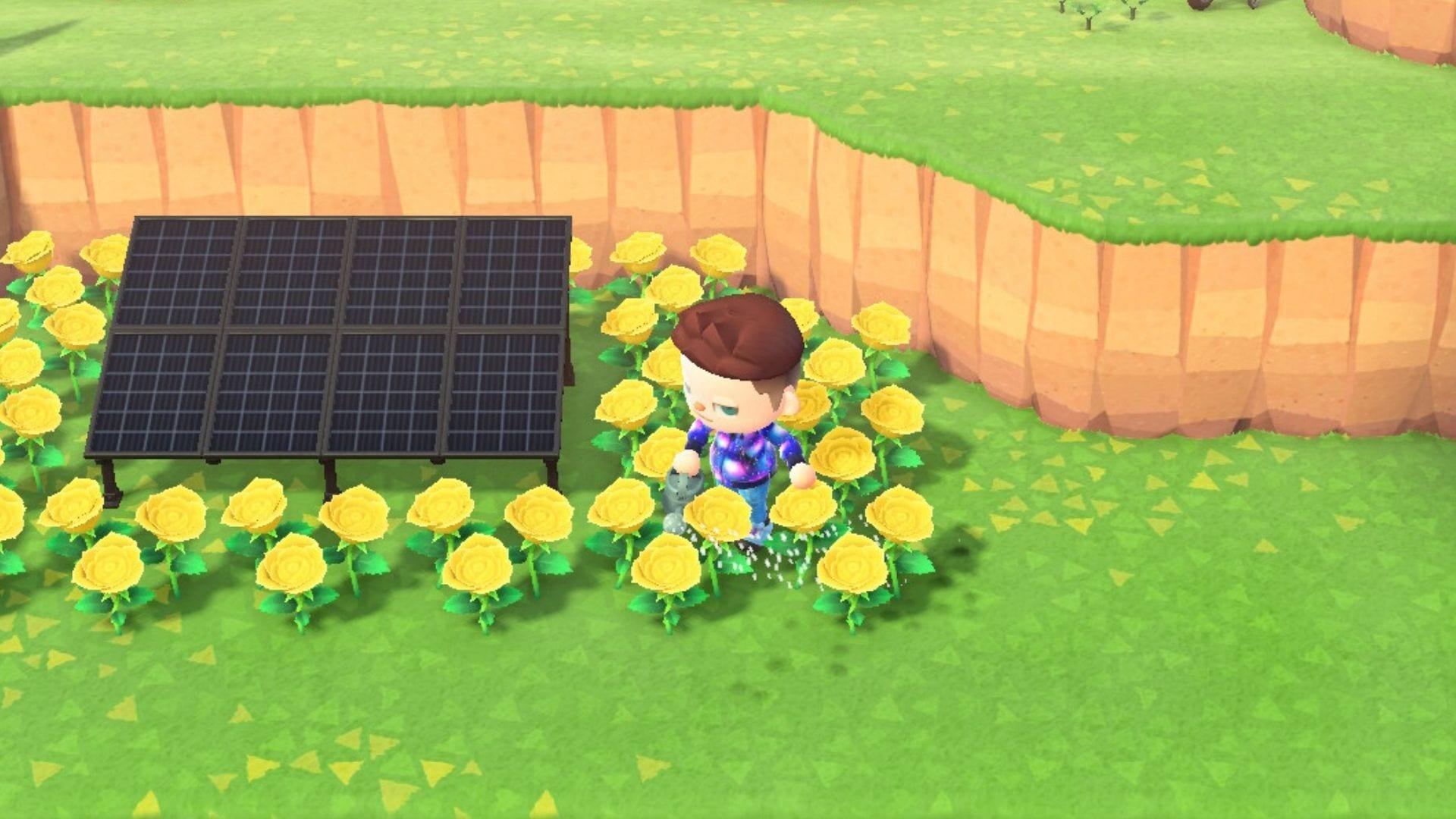 Animal Crossing New Horizons Gold Rose