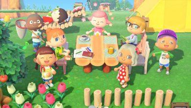 Photo of Animal Crossing New Horizons: cómo aumentar el nivel de amistad y conseguir una foto de los aldeanos