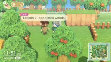 Photo of Animal Crossing Player inicia compañía de remoción de malezas, limpiará su isla para obtener consejos
