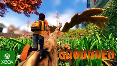 Photo of Basada en Obsidian, obtiene un primer vistazo al juego para un jugador: supervivencia con batidos de insectos