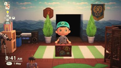 Photo of Animal Crossing New Horizons Rover Briefcase: lo que hace el Premio Labyrinth