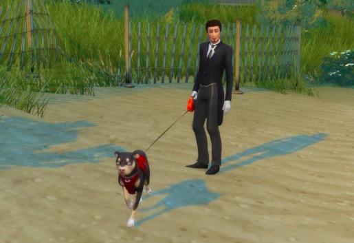 paseador de perros mod sims 4