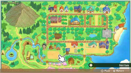 Story of Seasons Amigos de Mineral Town (1)