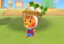 Photo of Animal Crossing New Horizons: ¿Puedes plantar nabos? Respondido
