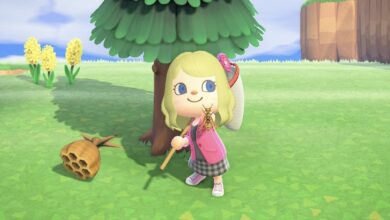 Photo of Animal Crossing New Horizons: Cómo atrapar una avispa