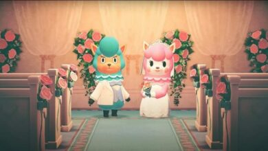 Photo of Animal Crossing New Horizons: Cómo conseguir artículos de boda