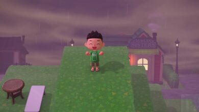 Photo of Animal Crossing: New Horizons Glitch te permite subir el cuarto nivel de elevación