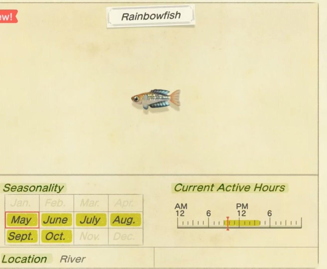 animales cruzando nuevos horizontes, peces arcoiris, cómo llegar
