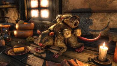 ESO: la nueva rata mascota no solo es linda, sino también útil