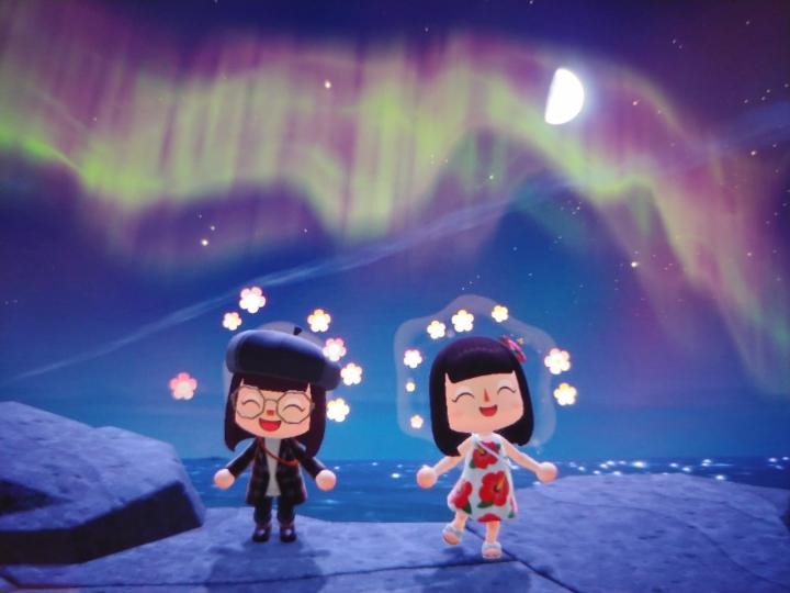 Aurora boreal animal cruzando nuevos horizontes