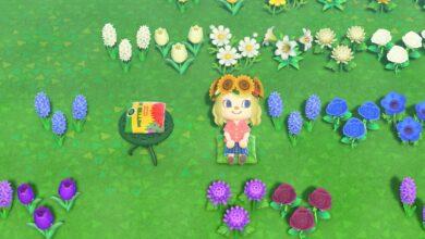 Photo of Animal Crossing New Horizons: los mejores diseños de cojines personalizados
