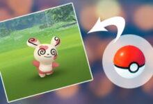 Photo of Con este truco, nunca más desperdiciarás una bola en Pokémon GO