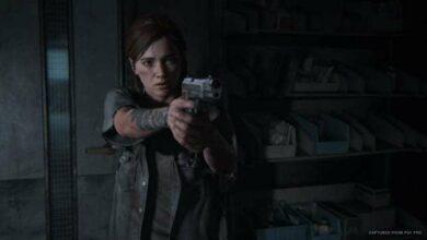 Photo of Last of Us Part 2: Túneles de código de puerta