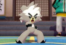 Photo of Pokemon Isle of Armor: Cómo evolucionar a Kubfu