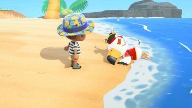 Photo of Animal Crossing New Horizons: Cómo encontrar Pirate Gulliver y todos los artículos