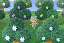 Photo of Animal Crossing: New Horizons ya no te permitirá mantener los árboles de estrellas pirateados