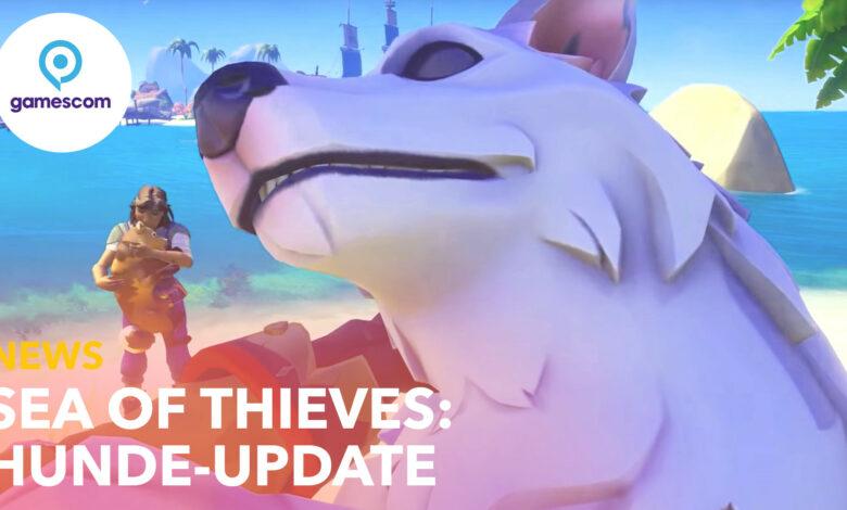 Sea of Thieves trae perros: los fanáticos publican montones de sus propios doggos como sugerencia
