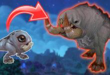 """Photo of WoW: Hoy es el """"Súper día"""" de las batallas de mascotas: nivel 25 en 10 minutos"""