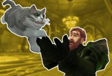 Los jugadores de WoW resuelven el misterio de un gato misterioso después de un año