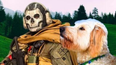 Jugador entrena a su perro para que juegue a CoD Warzone - consigue 3 muertes