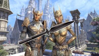 Debido a que los elfos ahora tienen palos en ESO, los jugadores creen que se lanzará un nuevo tipo de arma.