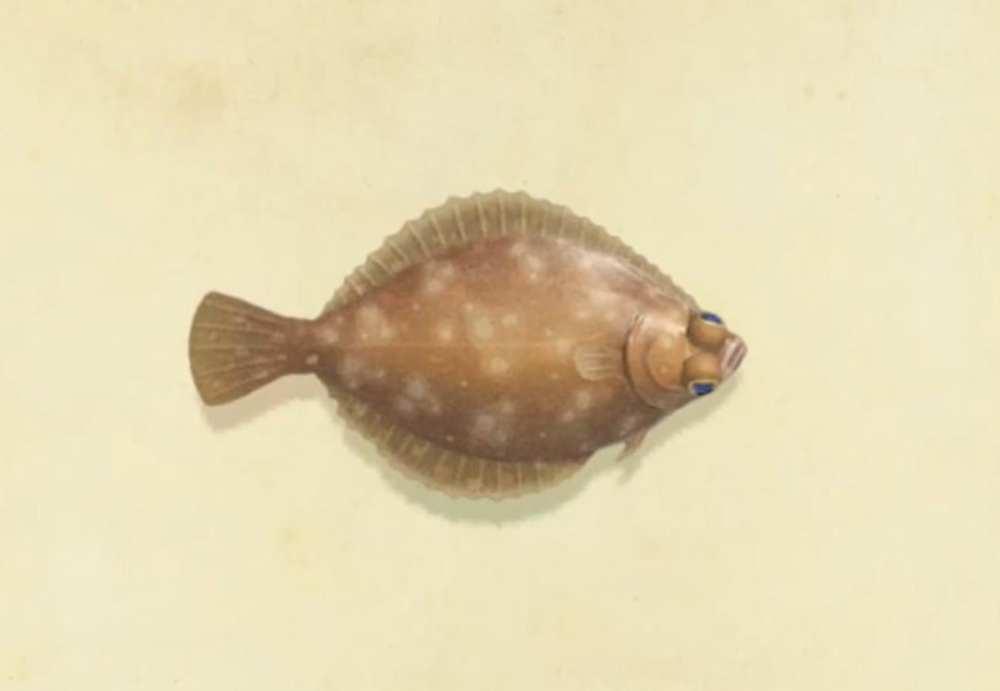 octubre peces e insectos animales cruzando nuevos horizontes
