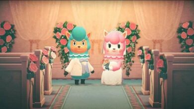 Photo of Animal Crossing New Horizons: Cómo conseguir artículos para bodas