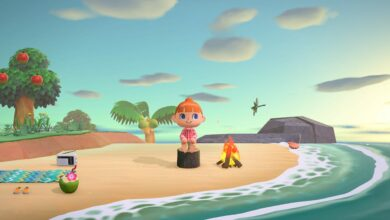 Photo of Animal Crossing New Horizons Oyster: cómo atrapar, ubicación, precio de venta
