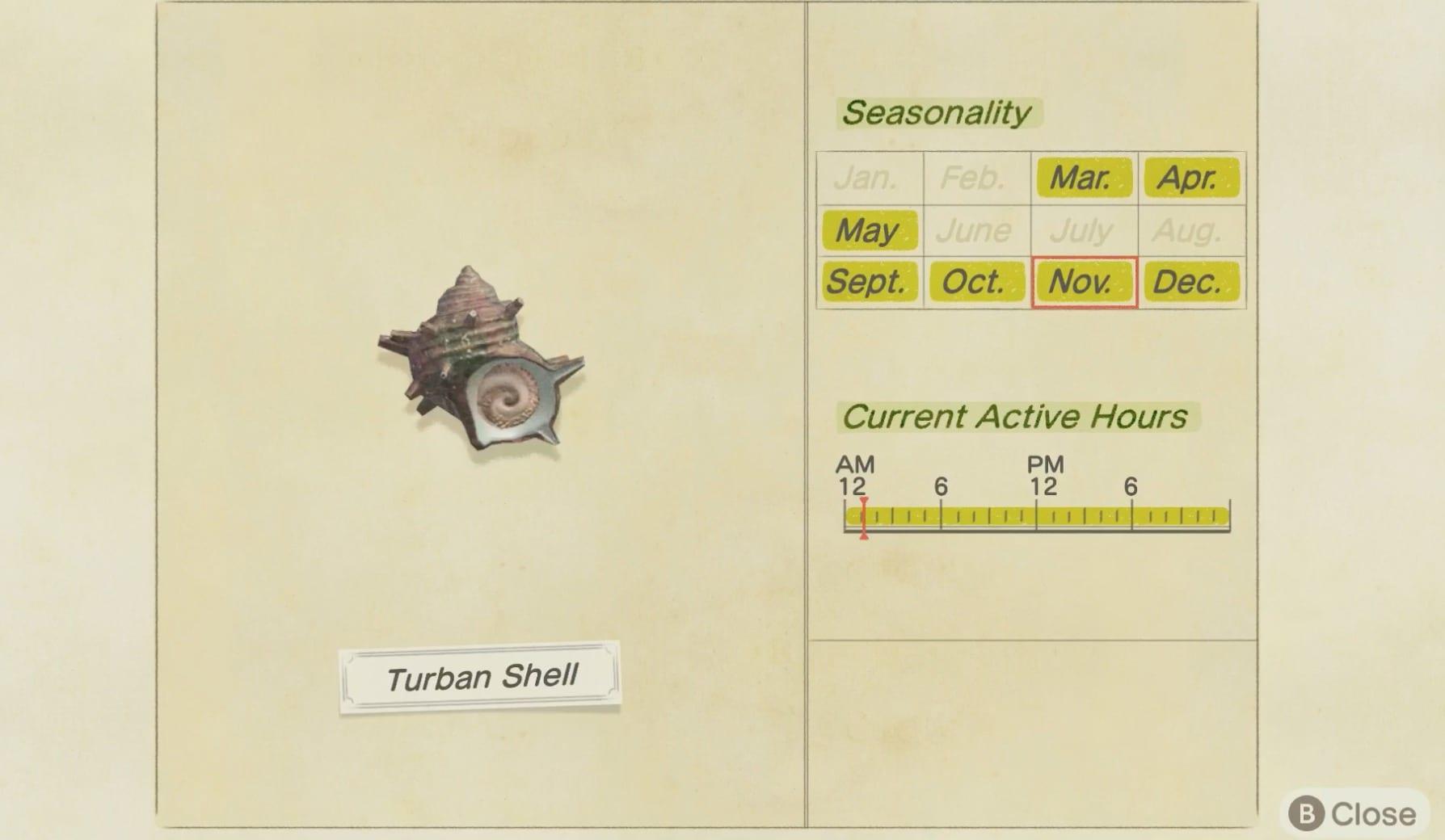 Concha de turbante, animal que cruza nuevos horizontes